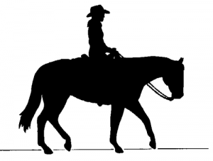 cowboy-riding